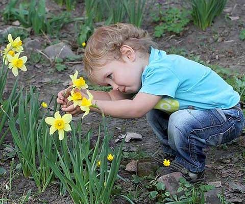 El contacto con la naturaleza en la escuela infantil