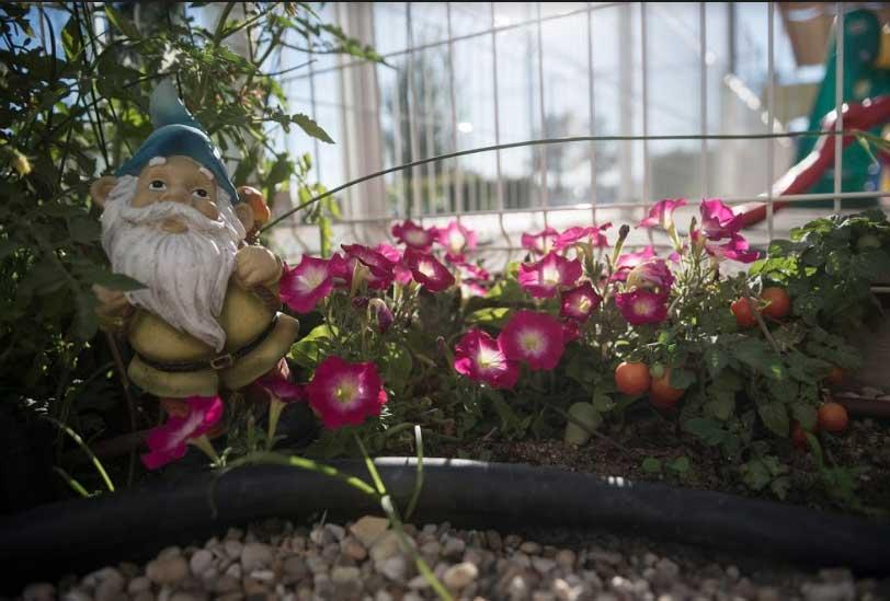 Escuela infantil en las Rozas con Jardín